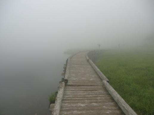 霧の覚満渕