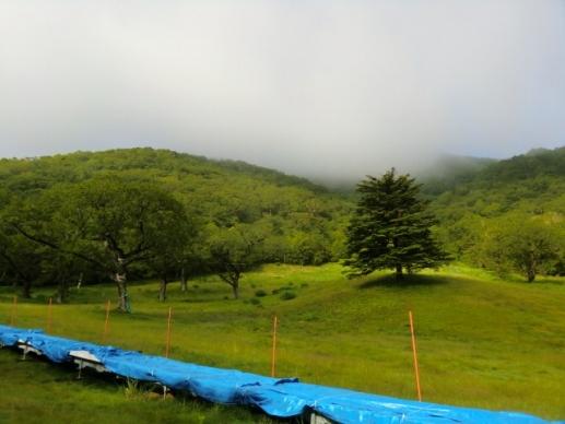 地蔵岳は雲の中