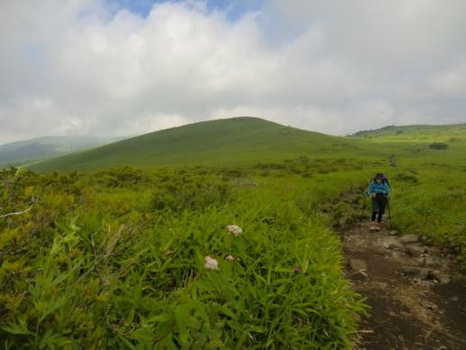 大草原の道を蝶々深山