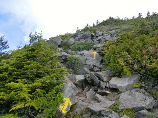 山頂への道しるべ