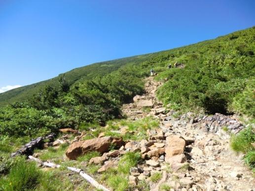 蛇紋岩の道が続く