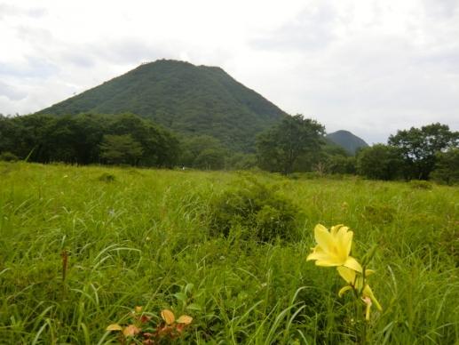 ユウスゲと榛名富士
