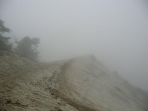 やはり霧の世界