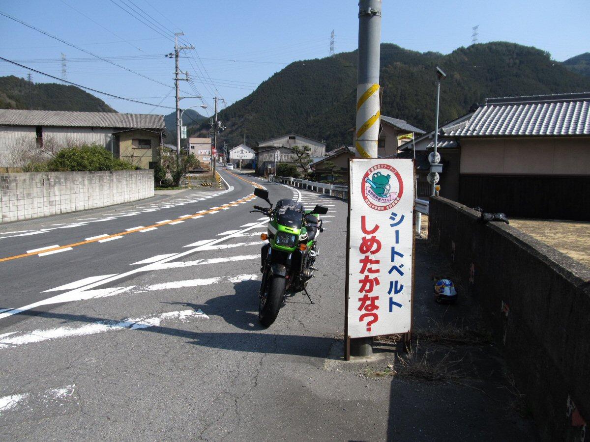 IMG_3981.jpg