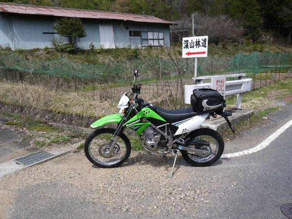 P1000239.jpg