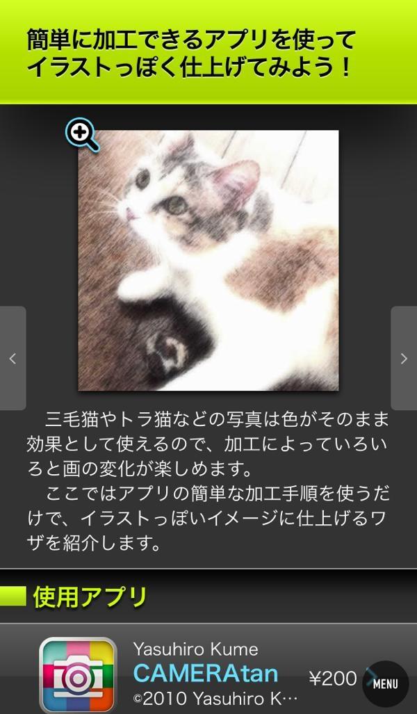 th_013.jpg