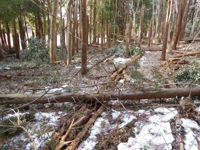 2014_0218_yatsuda_0021_R.jpg