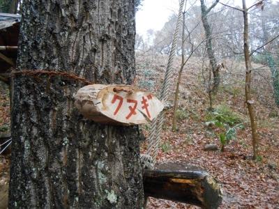 2014_0302_satoyamaclub_0050_R.jpg