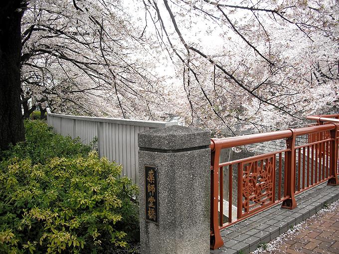 2003_ph22石神井川薬師堂橋