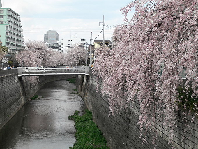 2003_ph23薬師堂橋先