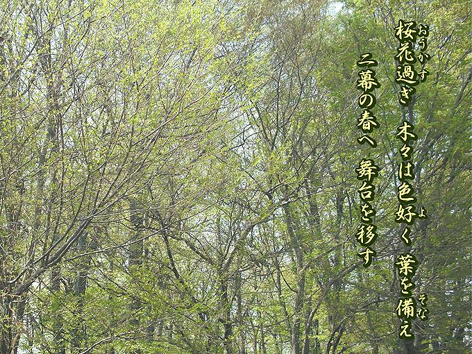2003_ph26春の二幕
