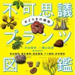 fukashigi_cover