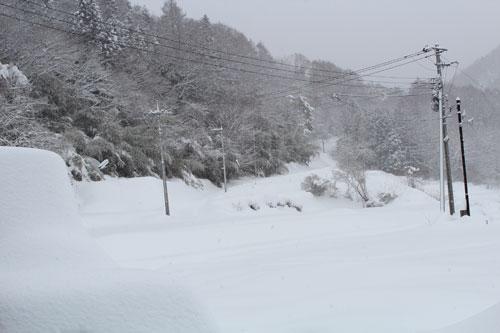 2014-2-15-1.jpg