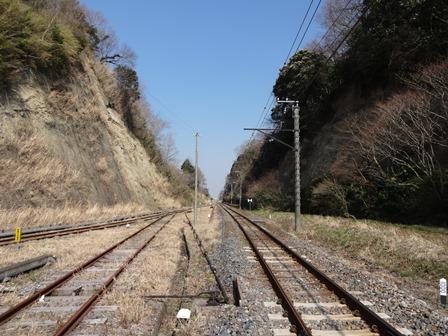 DSC02014.jpg