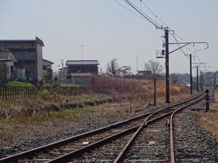 DSC02015.jpg