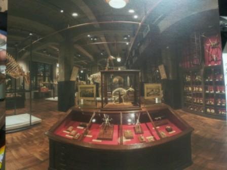 驚異の部屋