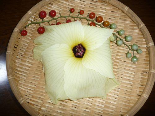 花オクラとミニトマト