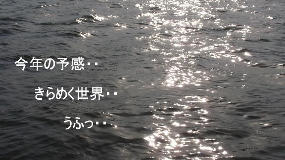 水面きらめく世界