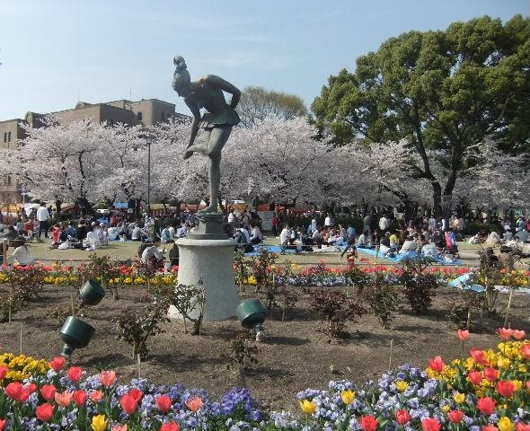鶴舞公園桜像