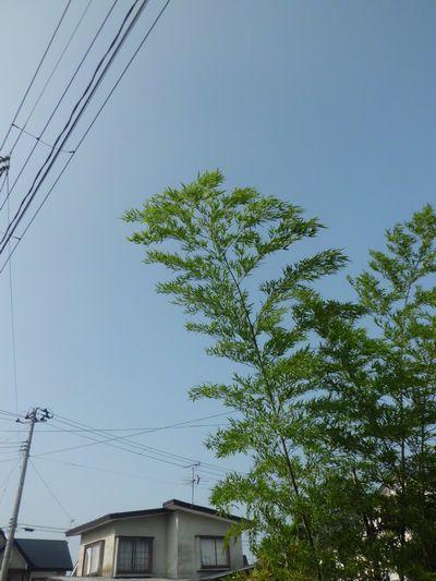 心地よい空