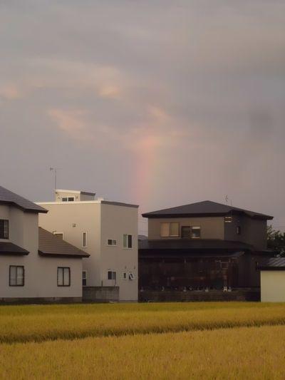 虹が見えたね