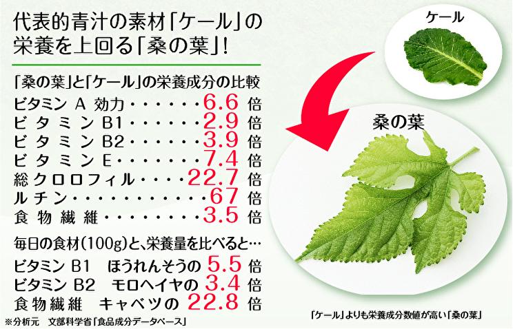 桑の葉の成分分析