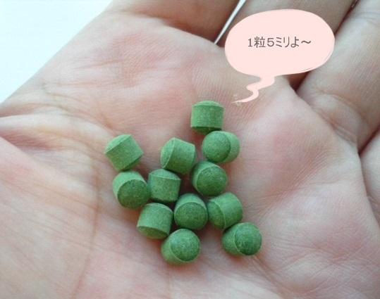 スーパーミドリムシ 粒12個