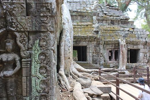 巨樹に浸食された寺院