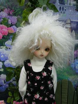 LadyBee モヘア 3