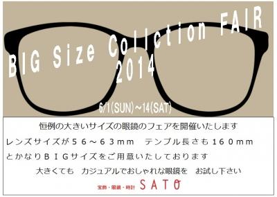 BIG2014.jpg