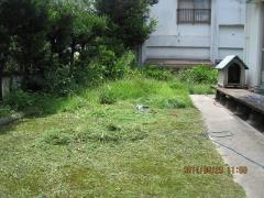 14年5月29日 草刈り1