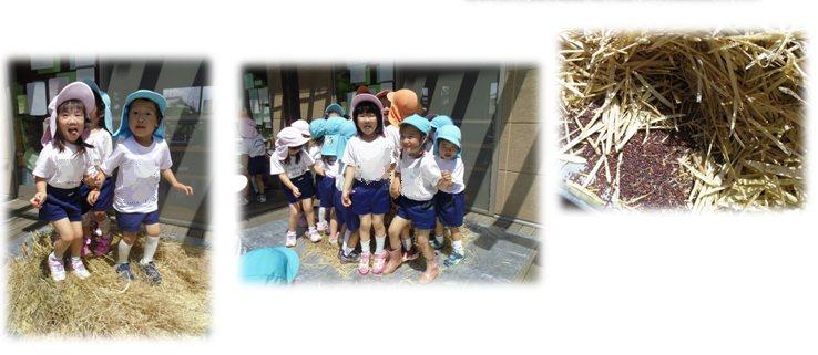 2_20140609180007b1a.jpg