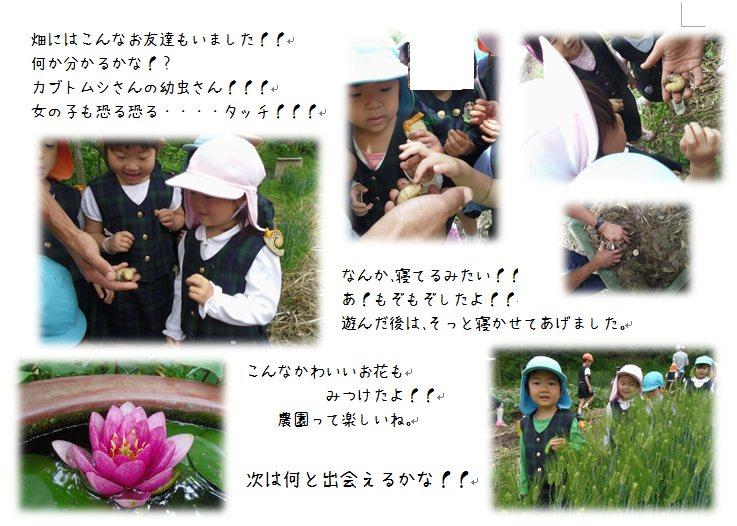 3_201405301042523c5.jpg
