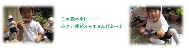 5_20140620182038fb5.jpg