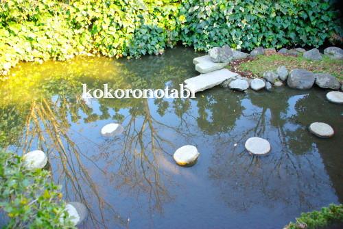 亀の池 北斗七星2