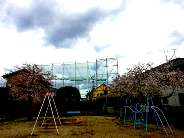 公園14.3.30①