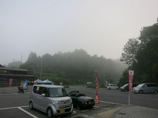 お散歩14.7.21④