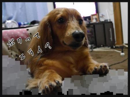 CACY6OA3_convert_20140429212806.jpg