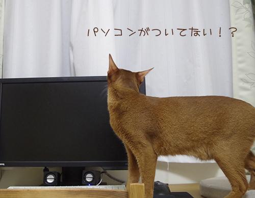 パソコンがついてない!