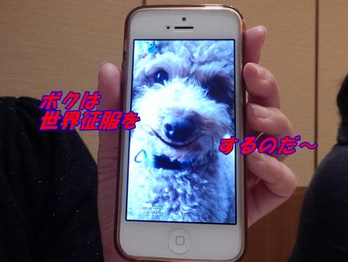 DSCN9654_20140406170413c8c.jpg