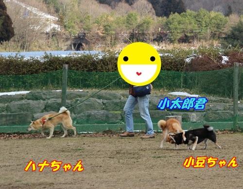 IMG_9608.jpg