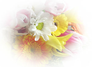 チャンミンの花束。