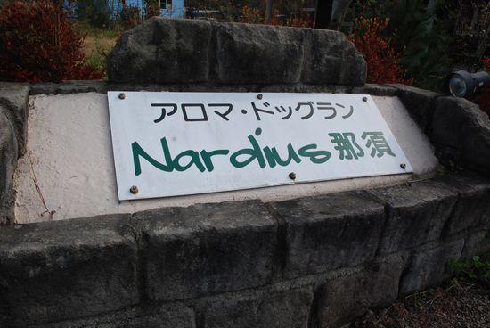 ノーフォークテリア*こま&こはる日和*