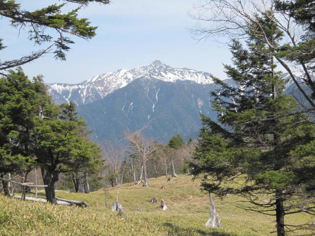 笹山からの塩見岳IMG_0533