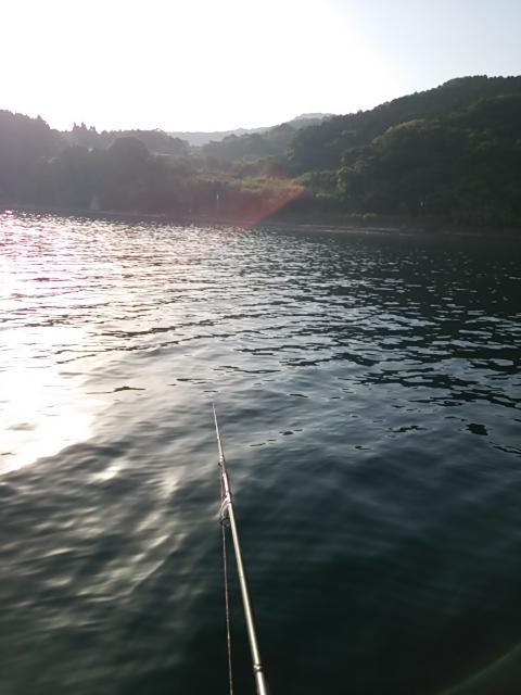 ボートの釣果3