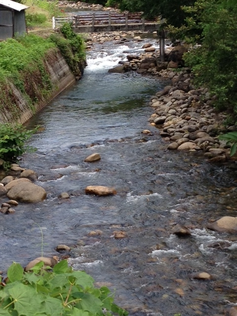 20140720-熊野川