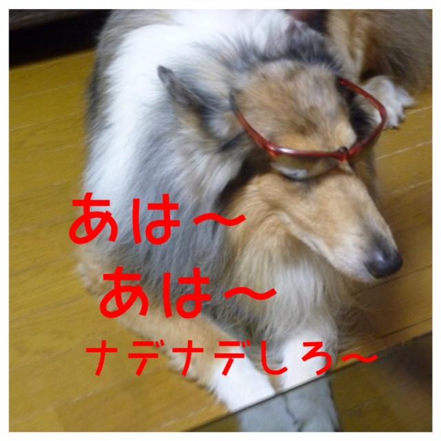 jiro.jpg