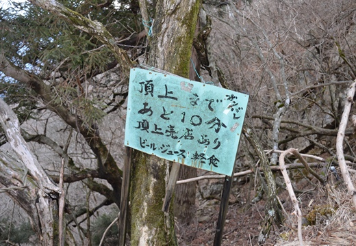 大山神社 (250)_R
