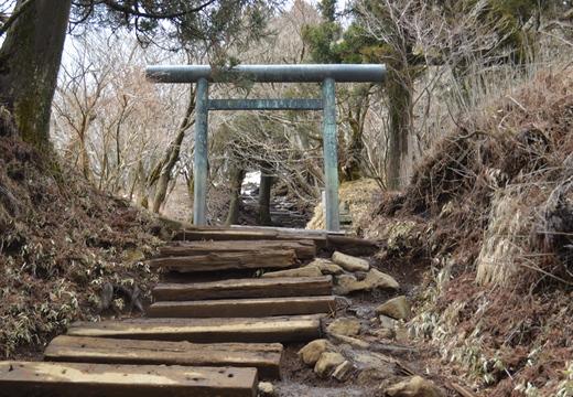 大山神社 (254)_R