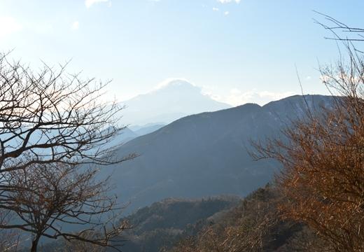 大山神社 (359)_R